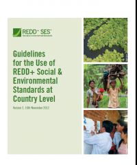 Guidelines for the use of REDD+ SES at country level